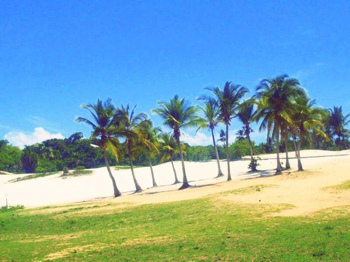 Saudade Da Minha Bahia Summer ☀ Nostagic Saudades Dos Tempos Que Foram Com Vento 🎶