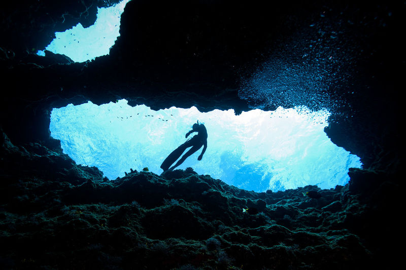 Saipan underwater life Adult Adults Only Adventure Beauty In Nature Blue Day Diving Equipment Diving Flipper Exploration Full Length Nature One Man Only One Person Only Men Outdoors People Scuba Diving Sea Sea Life Swimming UnderSea Underwater Underwater Diving Water
