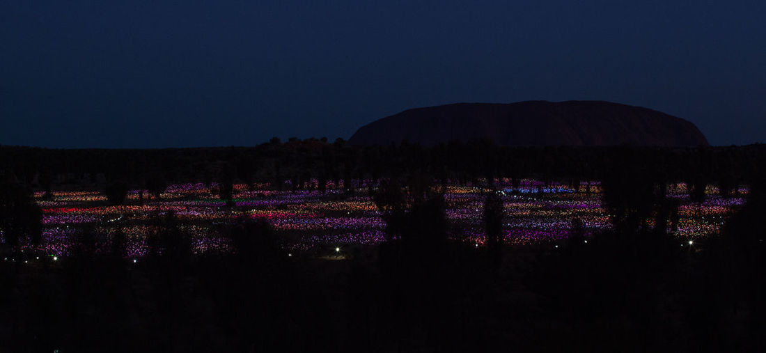 After Dark Art Installation Ayers Rock Colourful Light Installation Uluru Field Field Of Light Idyllic Illuminated Landscape Nature Night Purple Silhouette Tranquility