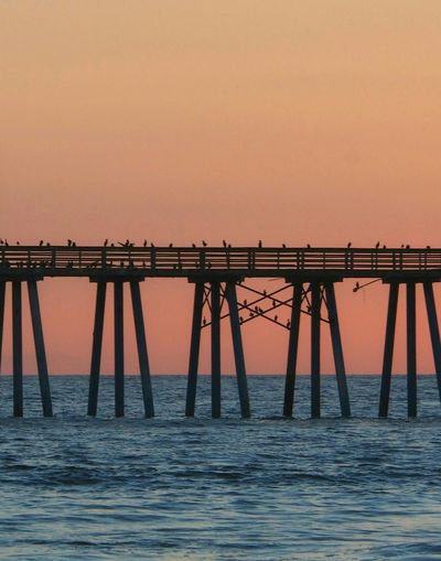 Silhouette birds perching on pier over sea against sunset sky