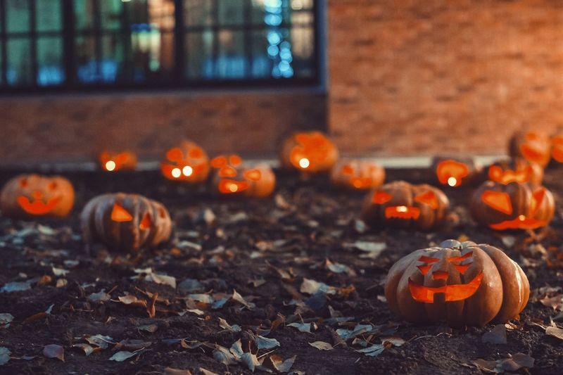 Close-up of pumpkin during autumn