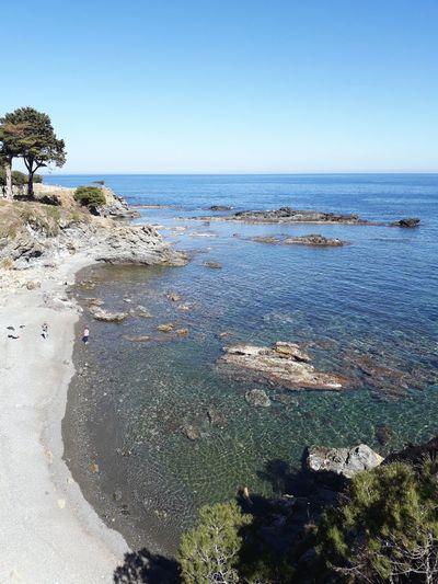 Emporda Llançà Mar Mediterranean  Girona Catalonia Catalunya Water Tree Clear Sky Sea Beach Wave Blue Sand Sky Seascape Rocky Coastline