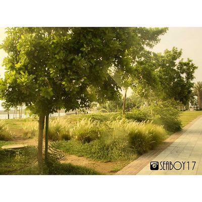 تصويري  عدستي جده جدة البحر الكورنيش كورنيش كورنيش_جده نيكون By_me Jeddah Nikon Nikontop Nikon_photography Nikon D3200 Nikon D3200 Nikon_photography_ Nikonphotography