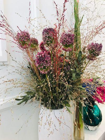 Interior Design Design Bouquet Plant Indoors  Flowering Plant No People Flower Window Close-up Flower Head Flower Arrangement Fragility Growth