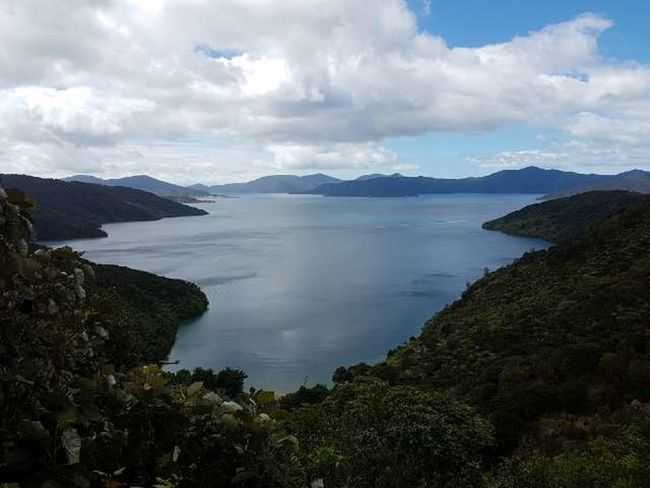 Marlborough Sounds Beauty In Nature Water No People