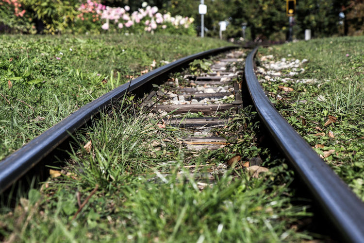 Rails (coloured edit) Rail Transportation Track Railroad Track Transportation Plant Grass Nature Metal No People Mode Of Transportation Day Selective Focus The Way Forward Direction Land Growth Outdoors Green Color Surface Level Public Transportation Long Steel