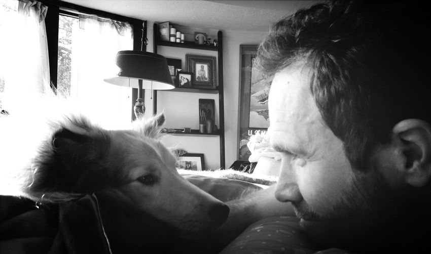 Face Off Staring Contest Man vs Dog ! Ready go!