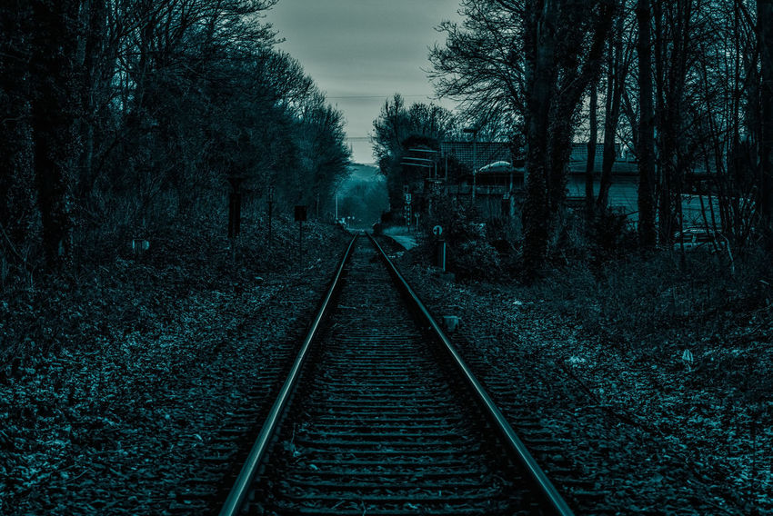 lost.... Railroad Track The Way Forward Transportation Diminishing Perspective Rail Transportation Tree Straight Day Outdoors No People Nature Sky