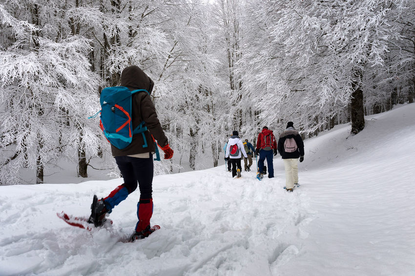 Subiaco, Italy - February 25, 2018: In the middle of winter, group of people take an excursion on the snow-covered mountain, wearing snowshoes on their feet to avoid sinking in the fresh snow, with the help of trekking poles. Adventure Beauty In Nature Cold Temperature Day Field Full Length Leisure Activity Lifestyles Men Nature Outdoors People Real People Snow Togetherness Tree Walking Warm Clothing Weather Winter