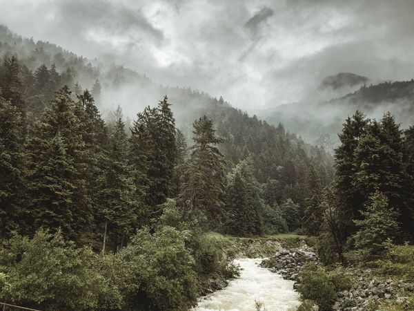 moody times Mountains Germany Farchant Bavaria Alps Wettersteingebirge Modernoutdoors Estergebirge Tree Cloud - Sky Sky Nature Growth Beauty In Nature Tranquility Outdoors Tranquil Scene Forest