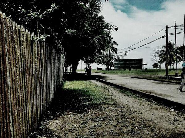 Roads Nuquí