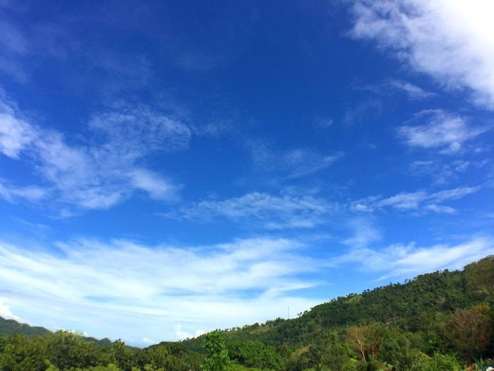 Sky Blue Nature Scenics Beauty In Nature Cloud - Sky Outdoors Day Scenery