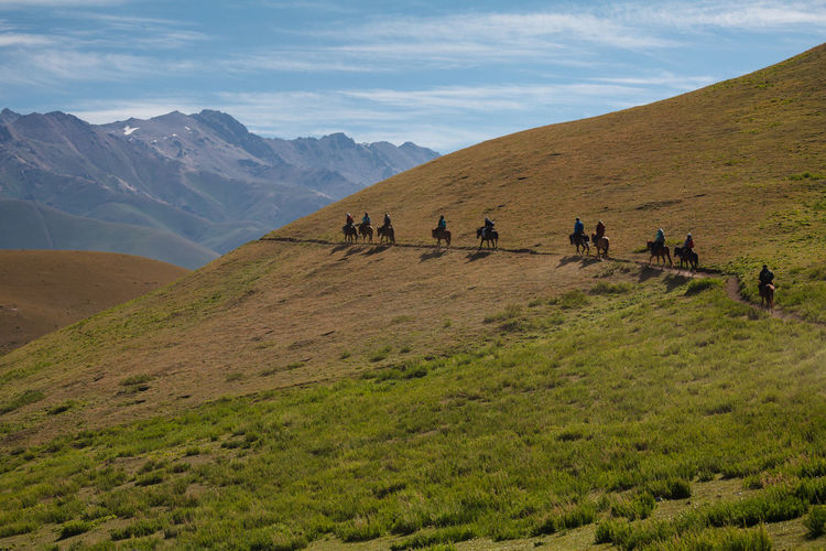 Guided horseback riding tour towards Song Kol Lake, an alpine lake in northern Naryn Province, Kyrgyzstan. Adventure ASIA Central Asia Day Group Of People Horse Kyrgyzstan Landscape Large Group Of People Leisure Activity Mountain Mountain Peak Mountain Range Nature Outdoors People Ride Tour Wanderlust