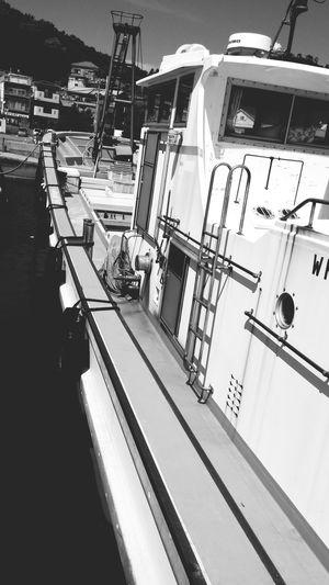 海 船 Black & White 夏