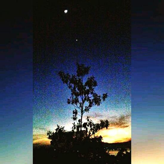 Morning Sky Thestars Stars In The Skies
