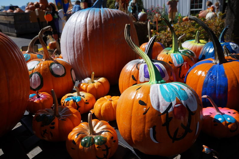 Close-up of pumpkins for sale during halloween