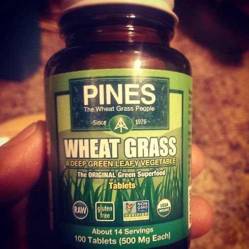Pineswheatgrass Wheatgrass Nongmoproject Glutenfree greensuperfood