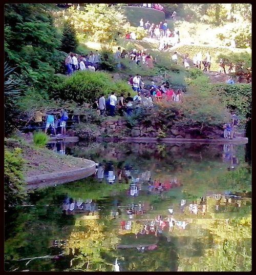 Eyeem Porto Meetup 11 Serralves Em Festa Color Explosion Reflection_collection Reflected Glory