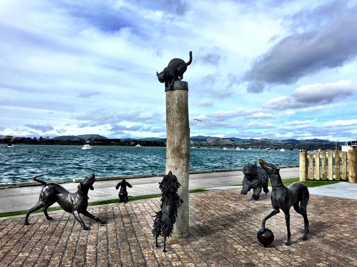 The Hairy Maclary characters on the waterfront in Tauranga Sculptures Animals From A Book Characters Waterfront