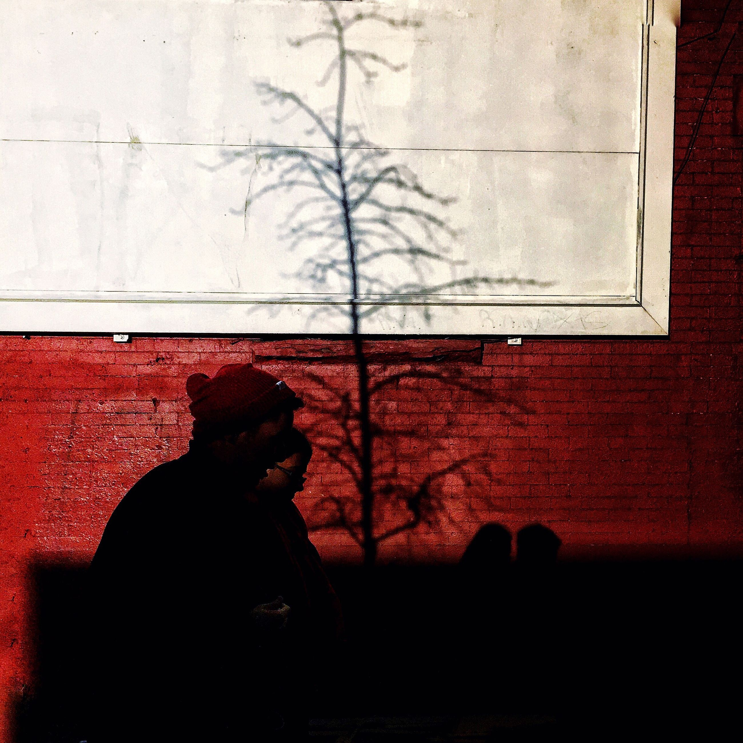 silhouette, building exterior, built structure, architecture, window, tree, wall - building feature, bare tree, lifestyles, sunset, men, red, house, person, unrecognizable person, indoors, standing