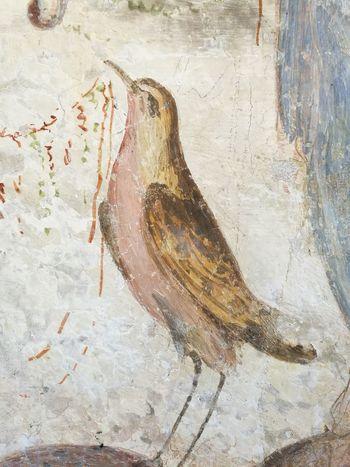 Castle Castle Ruin Fresco Fresco Decorations Fresco N Mural Fresco Paintings Fresco Wall Frescoes Frescos Italy Mythology Painting Parma Parma Italy
