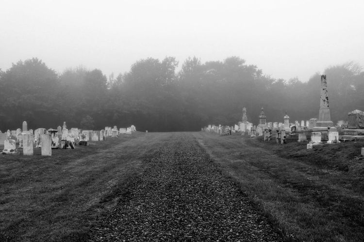 Black And White Friday Cemetery Memorial Tombstone Tree Graveyard Outdoors Nature Gravestone Cross Grave Day Fog Grass Large Group Of People Sky People