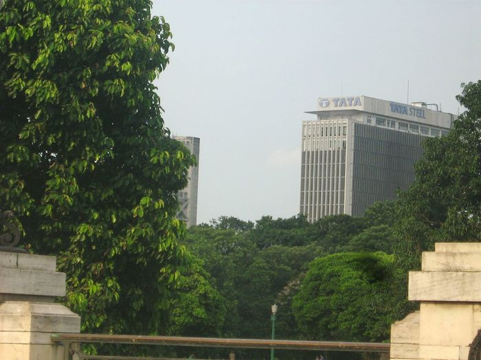 Tata Tata Steel Trees Tata Office Building Kolkata India