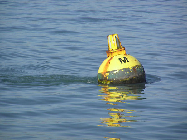 A water buoy in the beautiful blue, slightly rippling water of San Francisco; an icon of stability and serenity Buoy Buoy On The Water Floating Buoy Floating On Water No People Outdoors San Francisco San Francisco Bay Sea Water