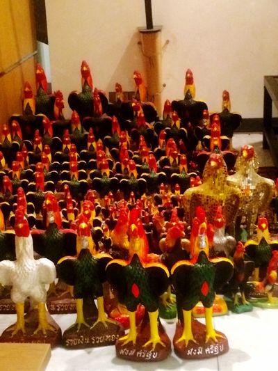 ไก่ ไก่ชน รูปปั้น Indoors  Day