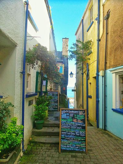 Tenby Pembrokeshire Multi Colored Blue Plant Architecture Building Exterior Built Structure Narrow Menu The Way Forward Alley No People From My Point Of View Paving Stone Viewpoint Colours Sky Footpath Mobilephotography Urban Landscape Colors Harbor Town Battle Of The Cities