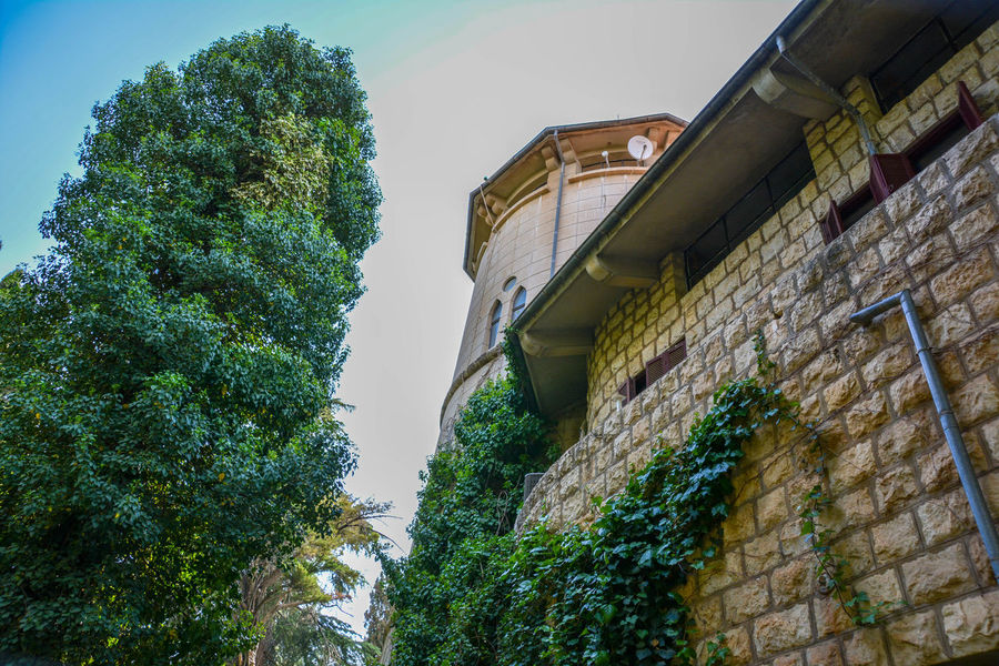 Bekaa Valley Chateau Kefraya Architecture Brick Brick Wall Building Building Exterior Built Structure Day Green Color Growth Low Angle View Nature No People Outdoors Plant Sky Tree Wall Wall - Building Feature Winery