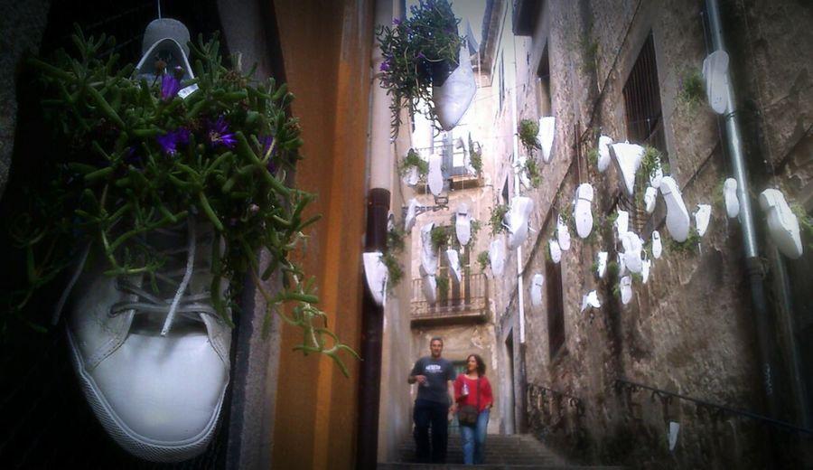 Shoes Flower Temps De Flors