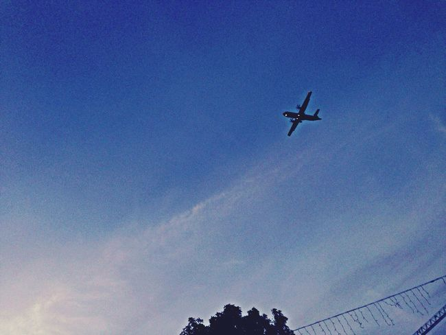 I wish if i can fly... Fly Away Sunrise_sunsets_aroundworld Beutiful Day Greatlife/