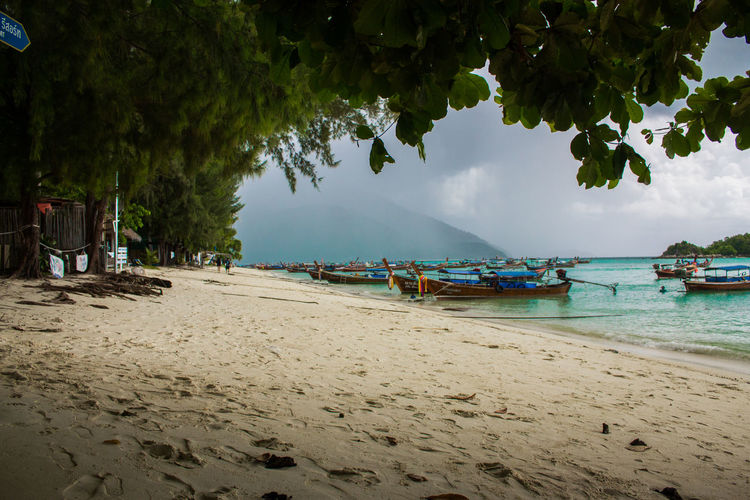 Sea Beach Beauty In Nature Day Incidental People Land Mode Of Transportation Moored Nature Nautical Vessel Outdoors Plant Sand Scenics - Nature Sea Sky Tranquil Scene Tranquility Transportation Tree Water