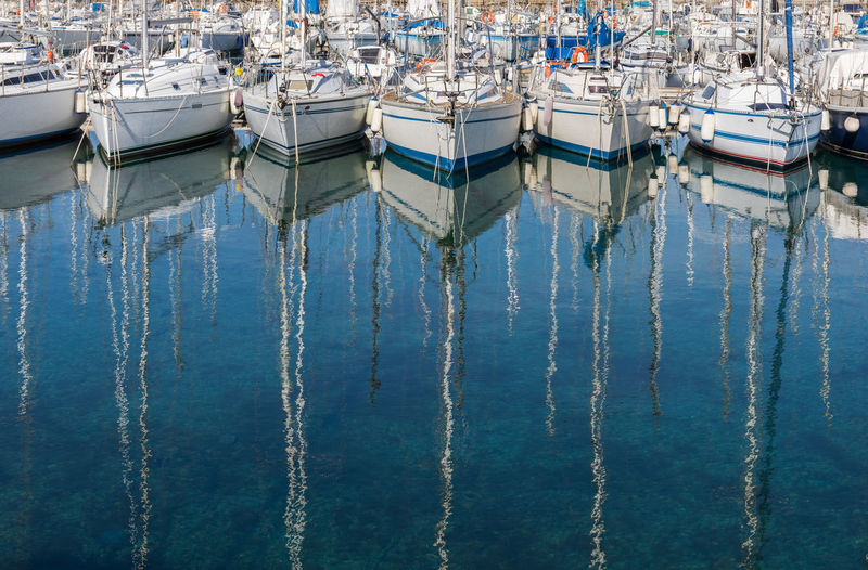Sailboats moored at harbor in sea