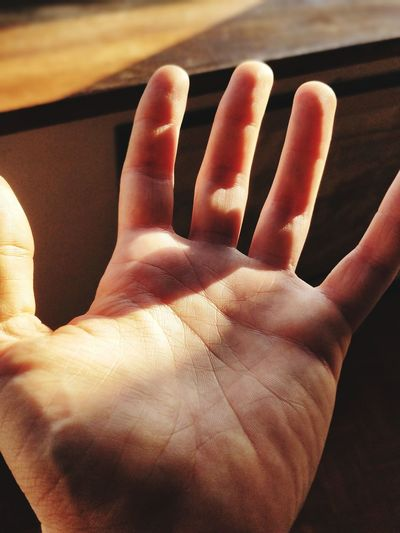 Luce benedetta. Morning Light Softness Fingers Wide Open Light EyeEm Selects Human Hand Close-up Body Part Personal Perspective Human Finger Finger Hand
