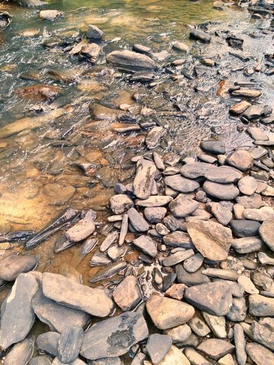 River Rock No People High Angle View Nature Full Frame Outdoors Day Abundance Large Group Of Objects Backgrounds Pebble Water Close-up Pebble Beach Rocks Rocks And Water Flat Stone EyeEmNewHere