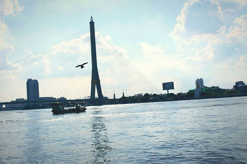 In the air. Sky River City Water Built Structure Cloud - Sky Waterfront Day Bridge Rama8bridge Bangkok Bird Flying High Ship Boat