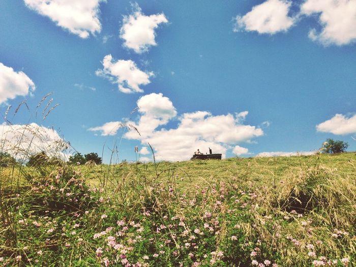 Farming Lookingup EyeEm New Jersey Making Hay