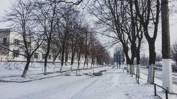 Милота ❄❄❄ Instasnow Snow 31ofdecember NewYear Likeforlikes Instakiev Kievgram