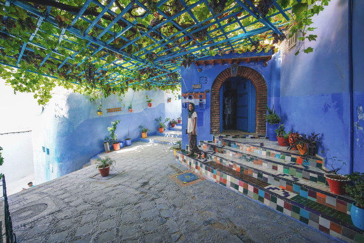 """""""The Blue City"""" We travelled from Sevilla to Tarifa, then took a ferry to Tangier, then a taxi to Chefchaouen, Morocco. EyeEmNewHere a new beginning Chefchaouen Morocco Beauty Blue City Blue Medina Built Structure Architecture Building Building Exterior Courtyard  Wall Digital Nomad Plant Arch Wall - Building Feature Window Tree Day No People Nature House Outdoors Sunlight Absence Hanging Entrance"""
