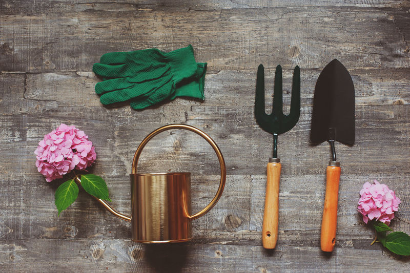 summer gardener table top view with garden tools, watering can, flowers and gloves Gardening Arrangement Green Color Nature Pink Color Flowering Plant Flower Still Life No People Plant Table Spring Summer Growing Watering Can Shovel Hydrangea