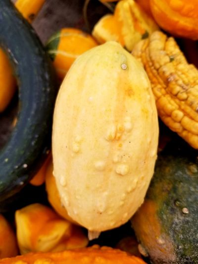gourd Healthy Lifestyle Vegetable Market Fruit Close-up Food And Drink