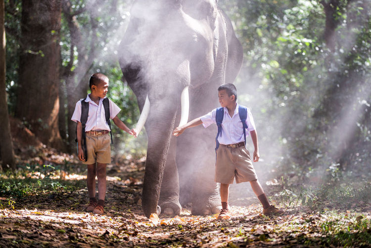 Full length of schoolboys standing by elephant in forest