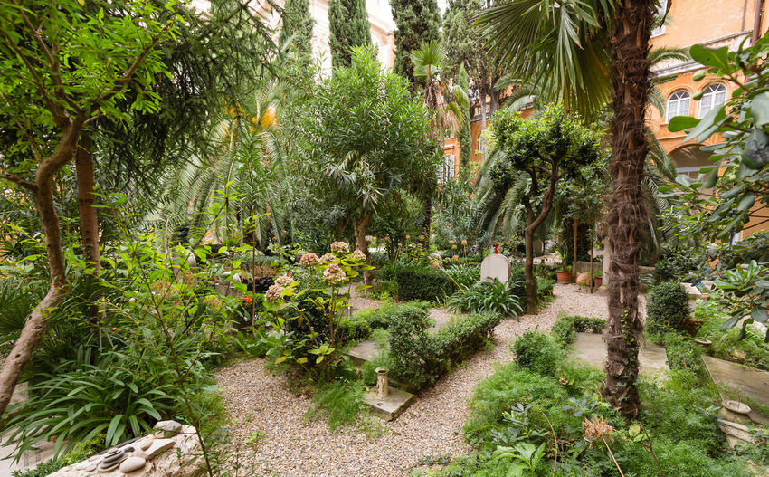 Campo Santo Teutonico (Teutonic Cemetery) inside the Vatican City. Italy Plant Palm Tree Footpath No People Tranquil Scene Garden Path Campo Santo Campo Santo Teutonico Camposanto Rome Italy Vatican Vatican City Vaticano Cemetery Religion Pope Summer