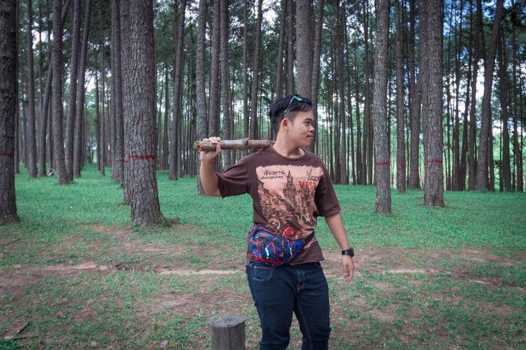 Fight Tree One