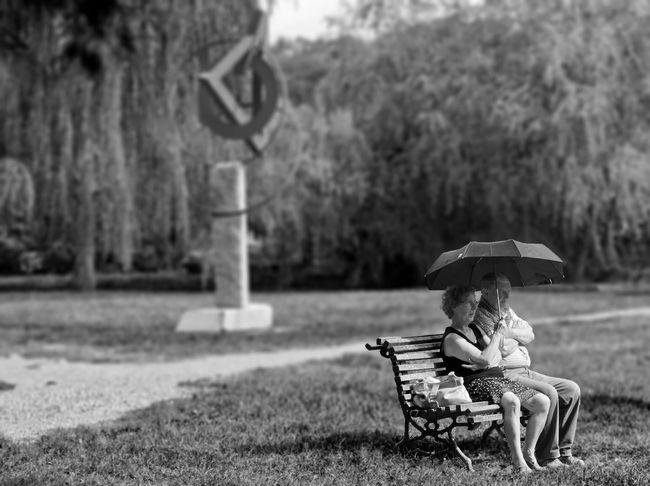 Umbrella Sitting Two People Nature Umbrella