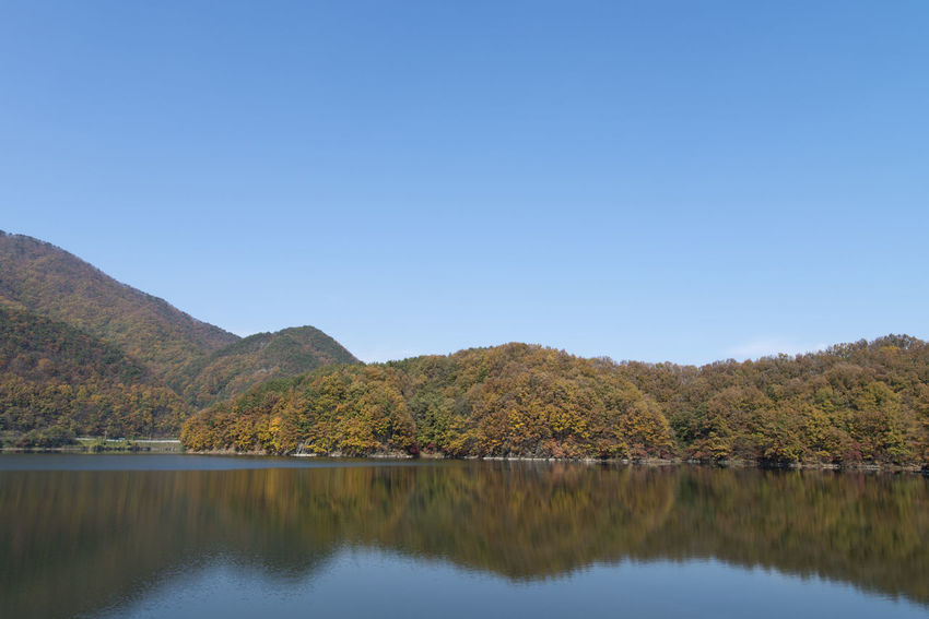 autumn landscape of Busodamak, a beautiful lake located in Okcheon, Chungbuk, South Korea Autumn Autumn Colors Busodamak Fall Beauty Morning Light Okcheon Beauty In Nature Clear Sky Day Lake Lake In Autumn Lake In The Morning Landscape Mountain Nature No People Outdoors Reflection Scenics Sky Tranquil Scene Tranquility Tree Water Waterfront