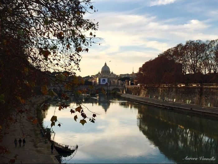 Lungotevere Roma Lungotevere Cupola Di San Pietro Tevere River Fiume Ponti River View Riverbank Riverside Photography Water Reflection Bridges Sunset Sunset_collection Trees