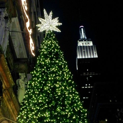 Christmas at Macy*s NYC with Empire State building in the background Newyorkcity Christmas Tree Empire State Building Macys Low Angle View Nightphotography Night Lights Night Skyline New York City New York At Night Empirestatebuilding Thecultureoftheholidays Christmas In New York City Christmas In NYC